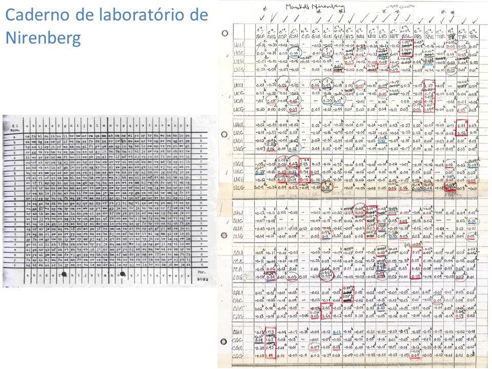 Caderno de laboratório de Nirenberg
