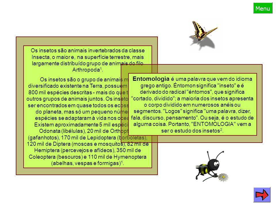 Os insetos são animais invertebrados da classe Insecta, o maior e, na superfície terrestre, mais largamente distribuído grupo de animais do filo Arthropoda 1.