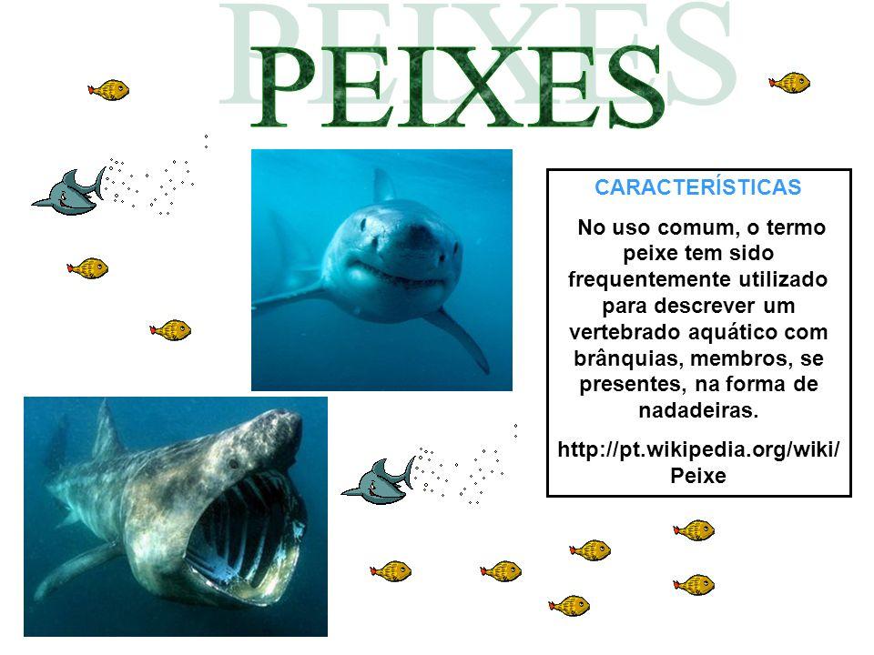 CARACTERÍSTICAS No uso comum, o termo peixe tem sido frequentemente utilizado para descrever um vertebrado aquático com brânquias, membros, se present