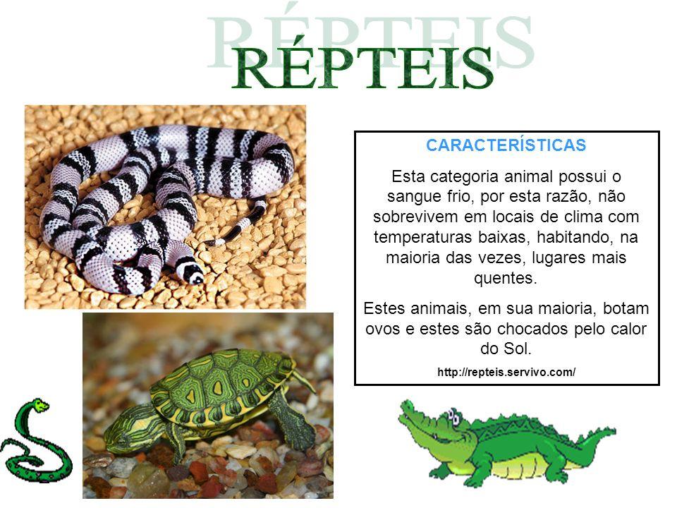 CARACTERÍSTICAS Esta categoria animal possui o sangue frio, por esta razão, não sobrevivem em locais de clima com temperaturas baixas, habitando, na m