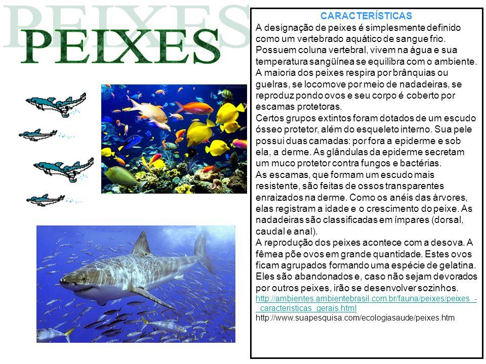 CARACTERÍSTICAS A designação de peixes é simplesmente definido como um vertebrado aquático de sangue frio. Possuem coluna vertebral, vivem na água e s