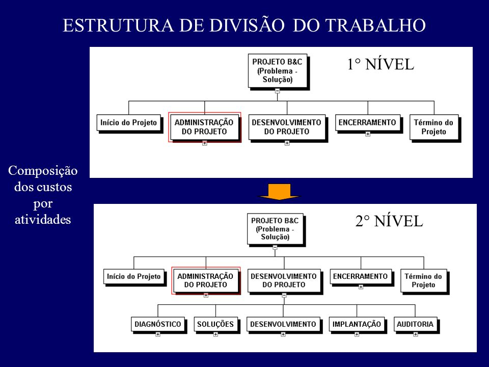 ESTRUTURA DE DIVISÃO DO TRABALHO 1° NÍVEL 2° NÍVEL Composição dos custos por atividades