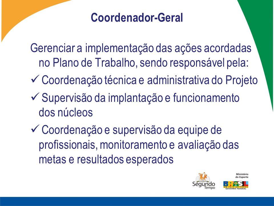 Coordenador-Geral Gerenciar a implementação das ações acordadas no Plano de Trabalho, sendo responsável pela: Coordenação técnica e administrativa do