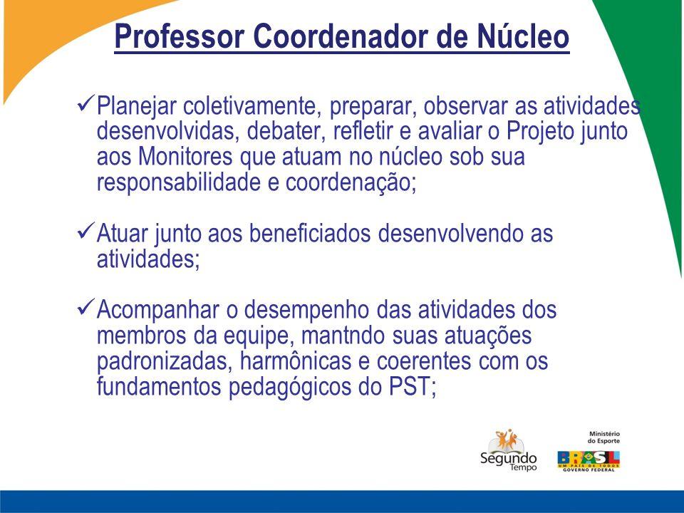 Professor Coordenador de Núcleo Planejar coletivamente, preparar, observar as atividades desenvolvidas, debater, refletir e avaliar o Projeto junto ao