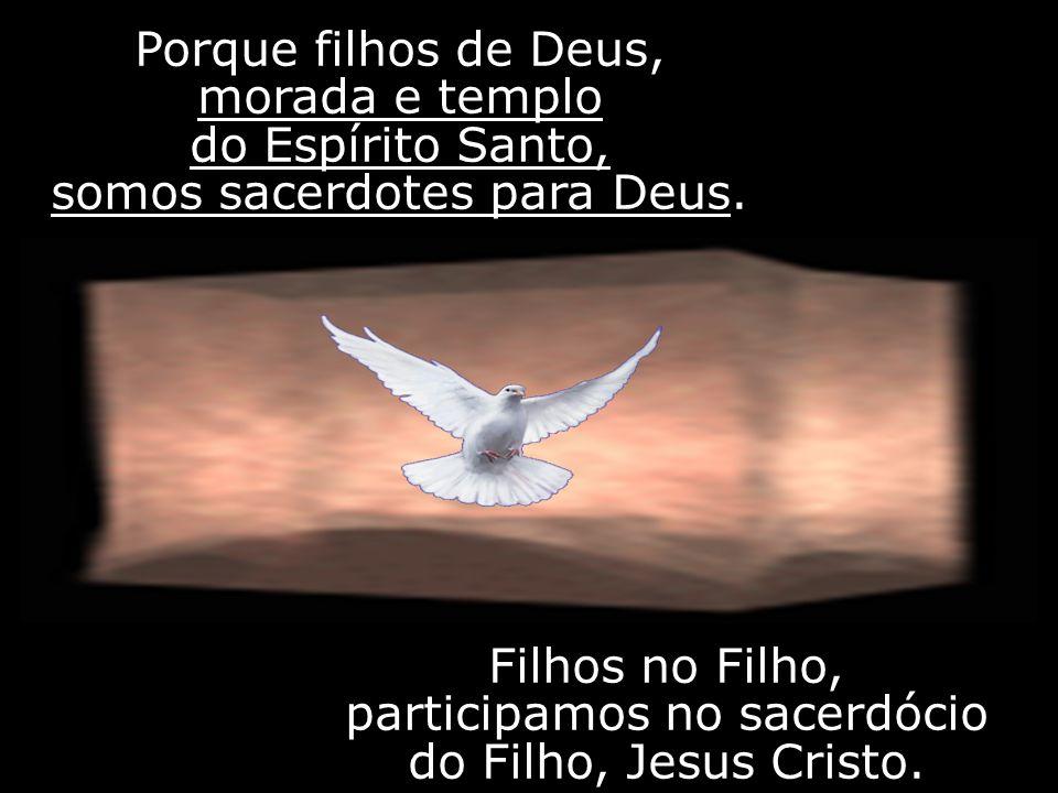 Porque filhos de Deus, morada e templo do Espírito Santo, somos sacerdotes para Deus. Filhos no Filho, participamos no sacerdócio do Filho, Jesus Cris