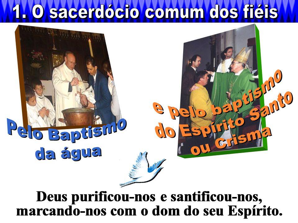 Configurados com Ele pela graça do Sacramento da Ordem, Bispos e Padres são pastores e sacerdotes com Cristo.