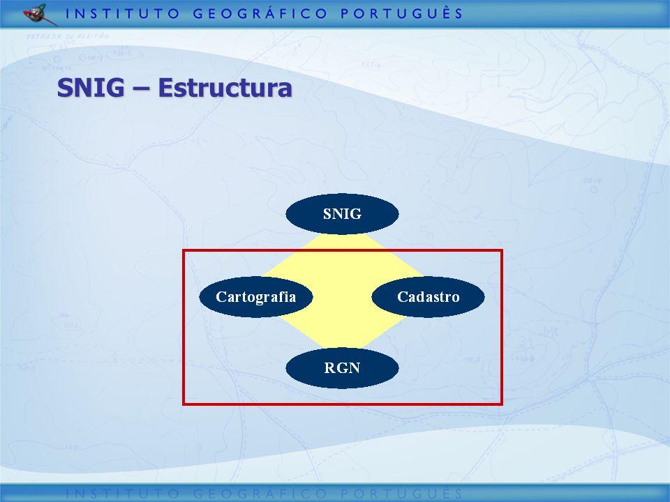 SNIG – Estructura