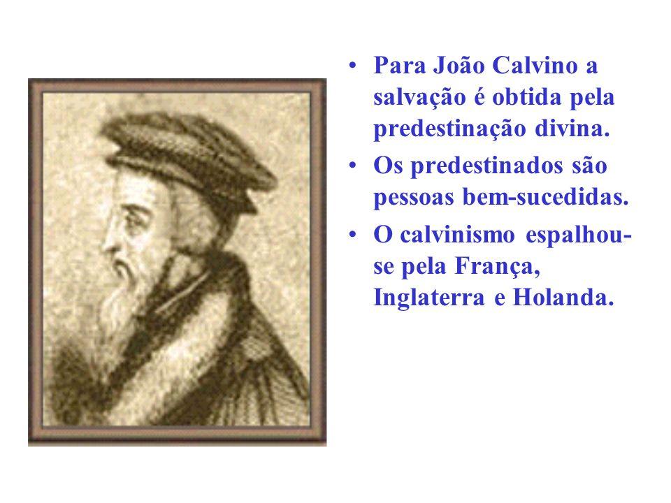As principais conseqüências da Reforma foram as seguintes: Enfraqueceu o poder político da Igreja Católica.