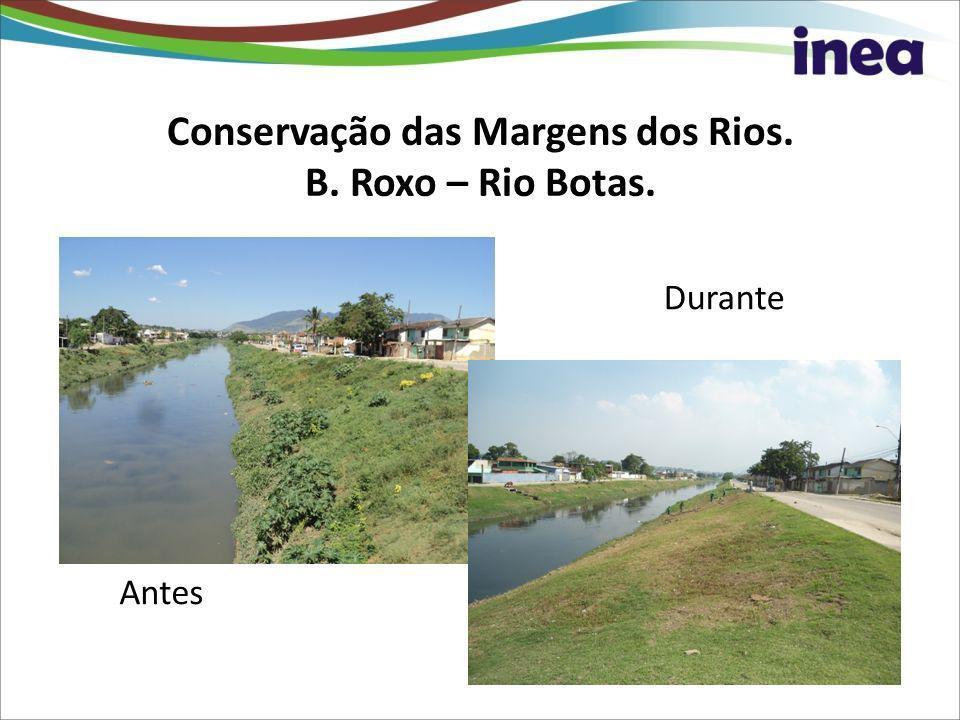 Conservação das Margens dos Rios. B. Roxo – Rio Botas. Antes Durante