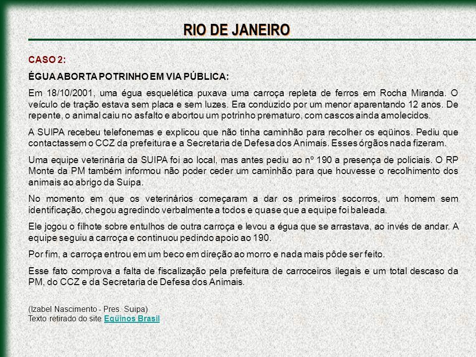 CASO 1: Foi vista (novembro de 2001) uma égua na rua Campos da Paz com um ferro enfiado no casco indo até a perna.