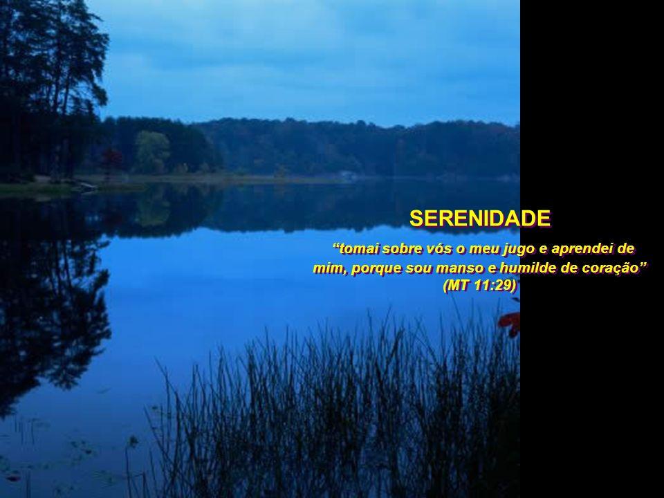 É a serenidade de quem entendeu que o ontem e o amanhã são cargas que somente Deus pode sustentar, e que a ela cabe apenas a carga de um só dia.