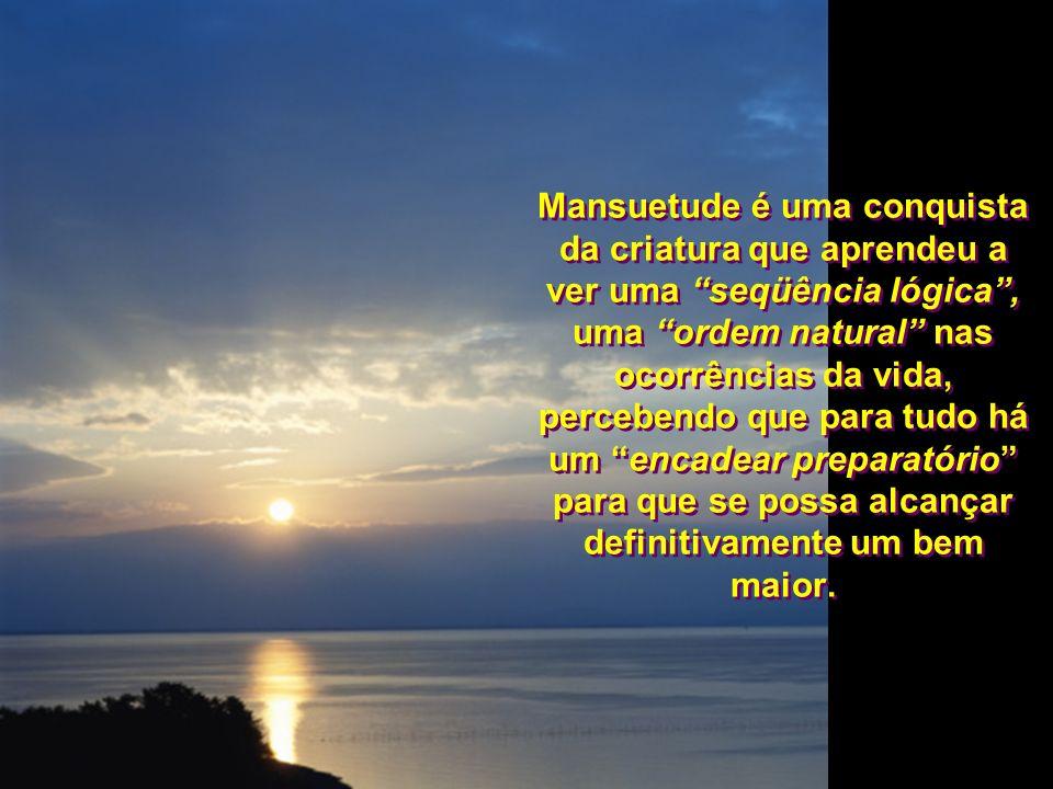 Mansuetude é uma conquista da criatura que aprendeu a ver uma seqüência lógica, uma ordem natural nas ocorrências da vida, percebendo que para tudo há um encadear preparatório para que se possa alcançar definitivamente um bem maior.