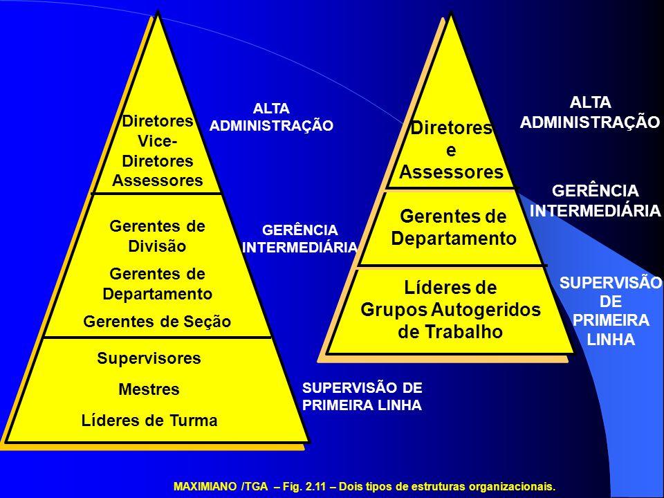 Supervisores Mestres Líderes de Turma Gerentes de Divisão Gerentes de Departamento Gerentes de Seção Diretores Vice- Diretores Assessores ALTA ADMINIS