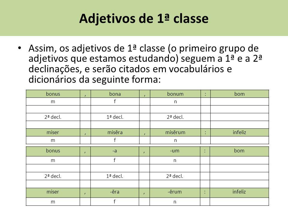 Adjetivos de 1ª classe Assim, os adjetivos de 1ª classe (o primeiro grupo de adjetivos que estamos estudando) seguem a 1ª e a 2ª declinações, e serão citados em vocabulários e dicionários da seguinte forma: bonus,bona,bonum:bom m f n 2ª decl.