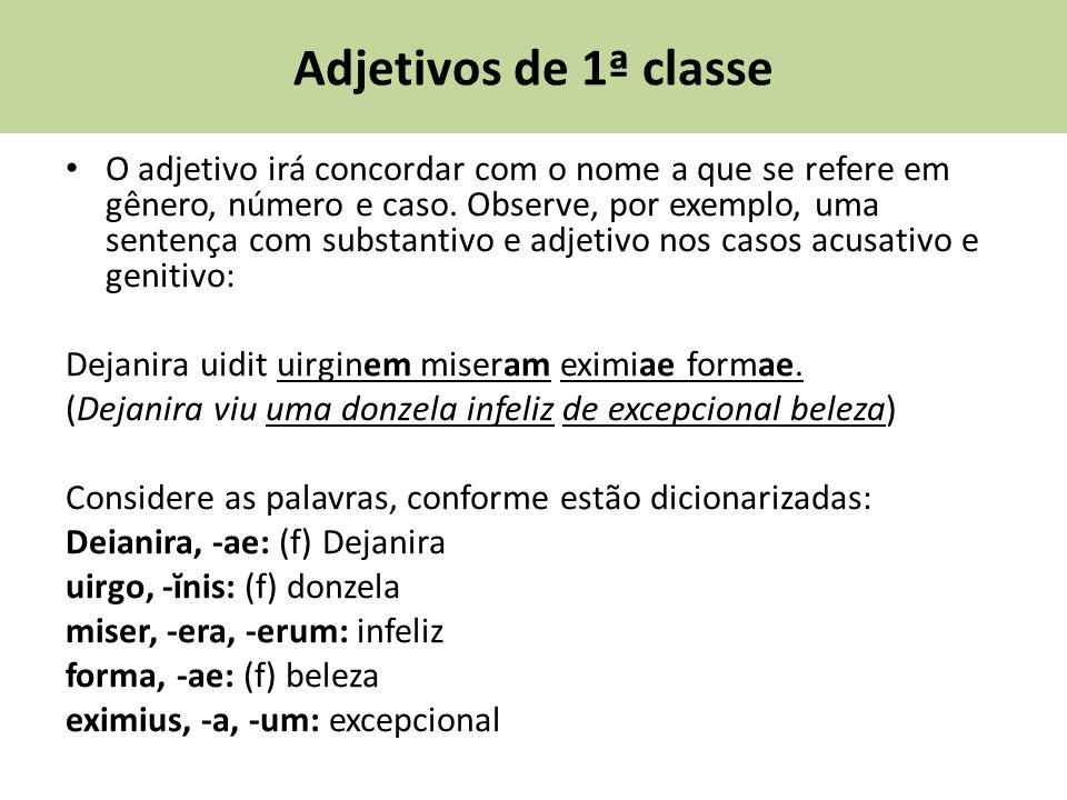 Adjetivos de 1ª classe O adjetivo irá concordar com o nome a que se refere em gênero, número e caso.