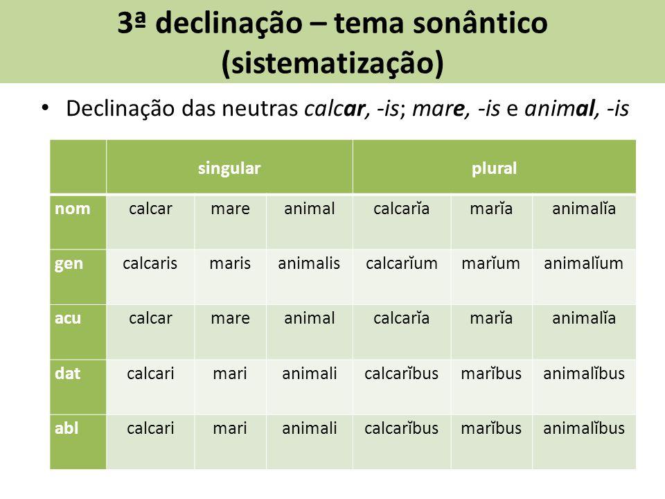 3ª declinação – tema sonântico (sistematização) Declinação das neutras calcar, -is; mare, -is e animal, -is singularplural nomcalcarmareanimalcalcarĭamarĭaanimalĭa gencalcarismarisanimaliscalcarĭummarĭumanimalĭum acucalcarmareanimalcalcarĭamarĭaanimalĭa datcalcarimarianimalicalcarĭbusmarĭbusanimalĭbus ablcalcarimarianimalicalcarĭbusmarĭbusanimalĭbus