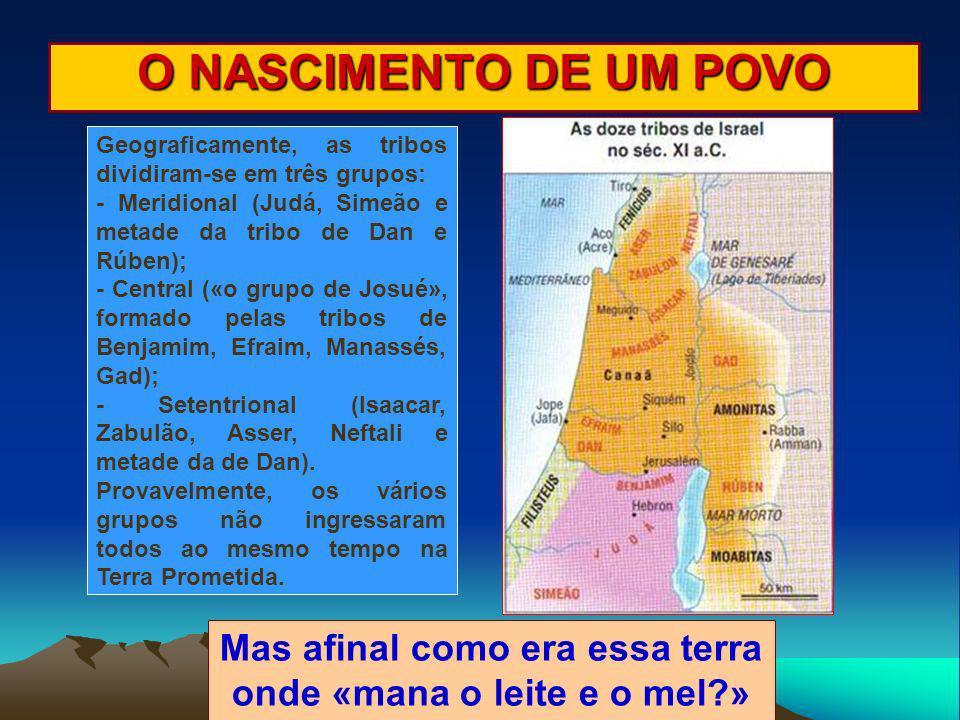 O NASCIMENTO DE UM POVO Geograficamente, as tribos dividiram-se em três grupos: - Meridional (Judá, Simeão e metade da tribo de Dan e Rúben); - Centra