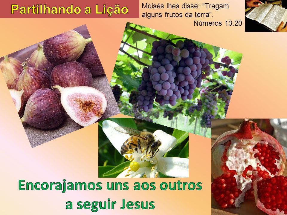 Moisés lhes disse: Tragam alguns frutos da terra. Números 13:20