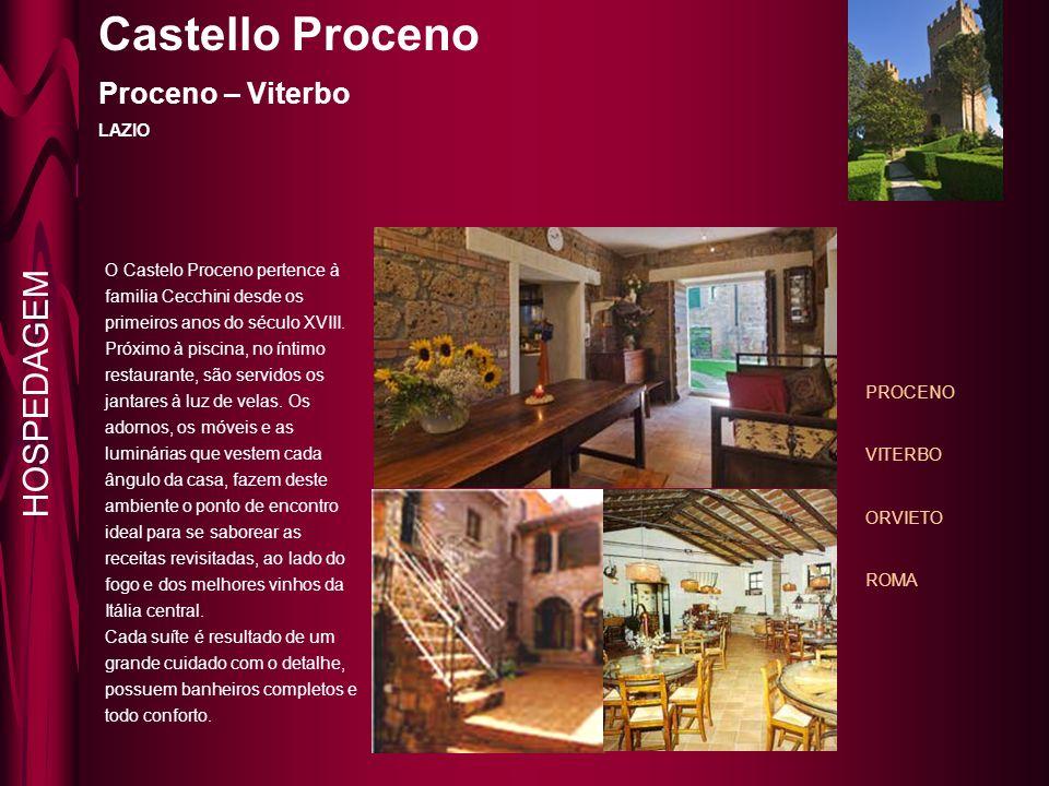 Castello Proceno Proceno – Viterbo LAZIO PROCENO VITERBO ORVIETO ROMA O Castelo Proceno pertence à familia Cecchini desde os primeiros anos do século XVIII.