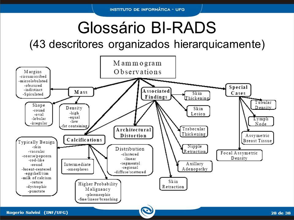 28 de 38 Rogerio Salvini (INF/UFG) Glossário BI-RADS (43 descritores organizados hierarquicamente)