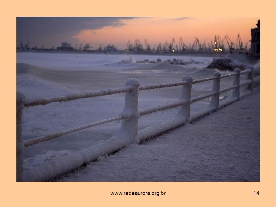 www.redeaurora.org.br14