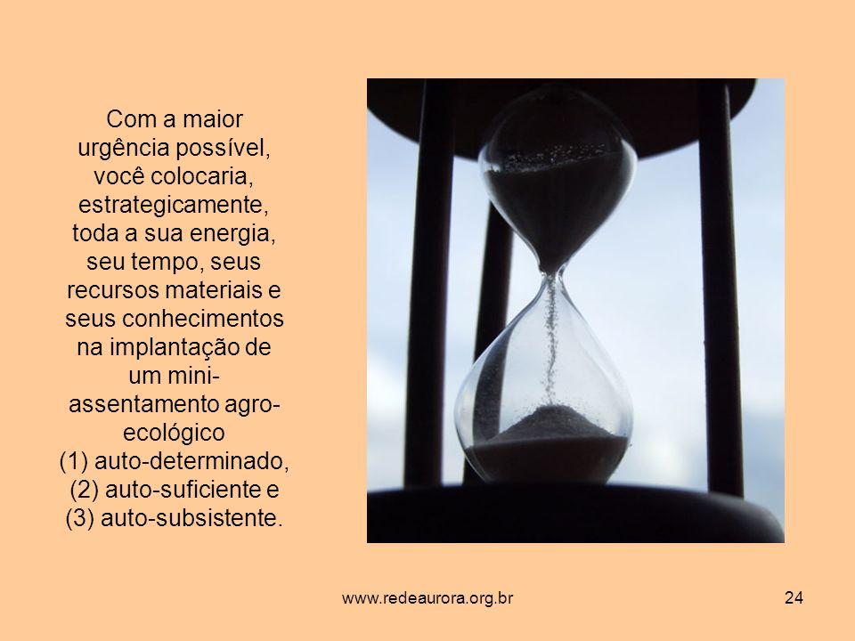 www.redeaurora.org.br24 Com a maior urgência possível, você colocaria, estrategicamente, toda a sua energia, seu tempo, seus recursos materiais e seus conhecimentos na implantação de um mini- assentamento agro- ecológico (1) auto-determinado, (2) auto-suficiente e (3) auto-subsistente.