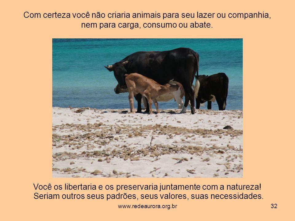 www.redeaurora.org.br32 Com certeza você não criaria animais para seu lazer ou companhia, nem para carga, consumo ou abate.