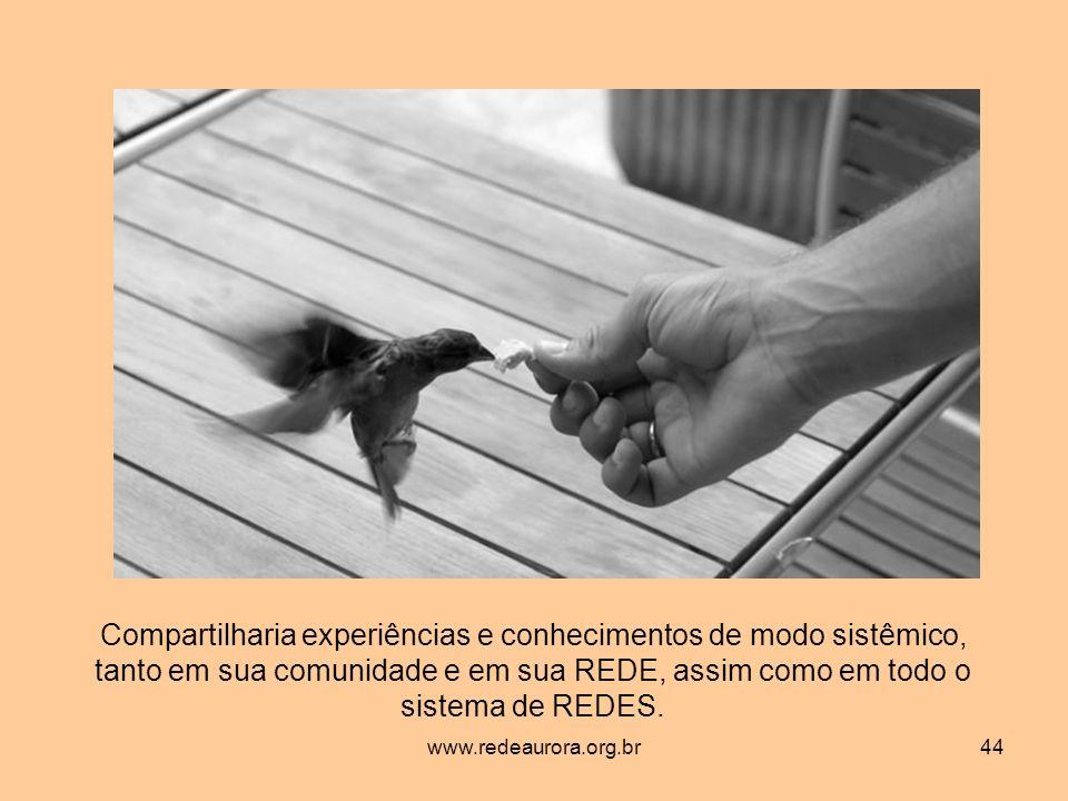 www.redeaurora.org.br44 Compartilharia experiências e conhecimentos de modo sistêmico, tanto em sua comunidade e em sua REDE, assim como em todo o sistema de REDES.