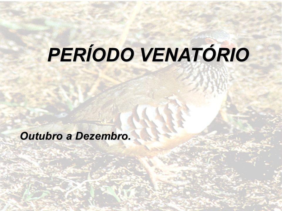 Outubro a Dezembro. PERÍODO VENATÓRIO