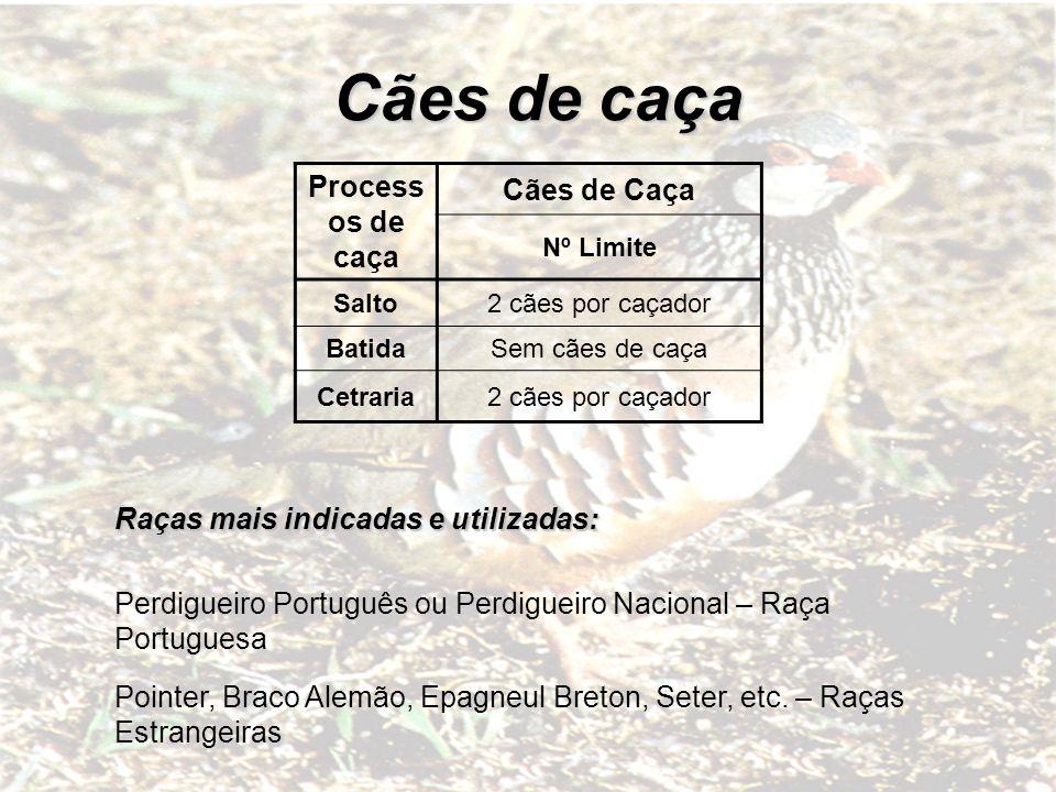 Process os de caça Cães de Caça Nº Limite Salto2 cães por caçador BatidaSem cães de caça Cetraria2 cães por caçador Raças mais indicadas e utilizadas:
