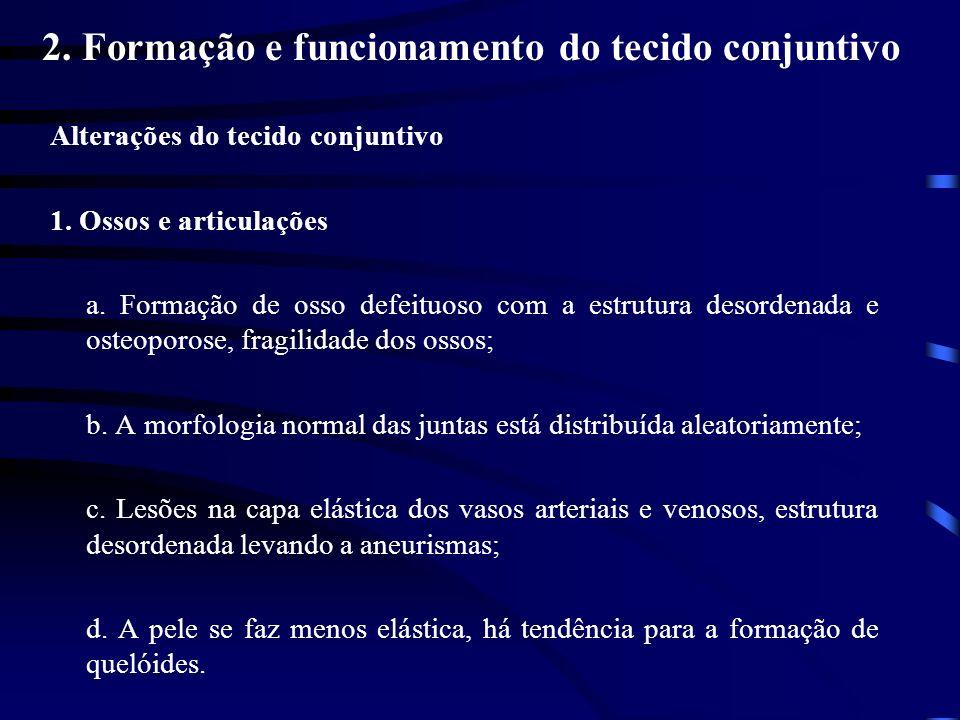 2. Formação e funcionamento do tecido conjuntivo Alterações do tecido conjuntivo 1. Ossos e articulações a. Formação de osso defeituoso com a estrutur