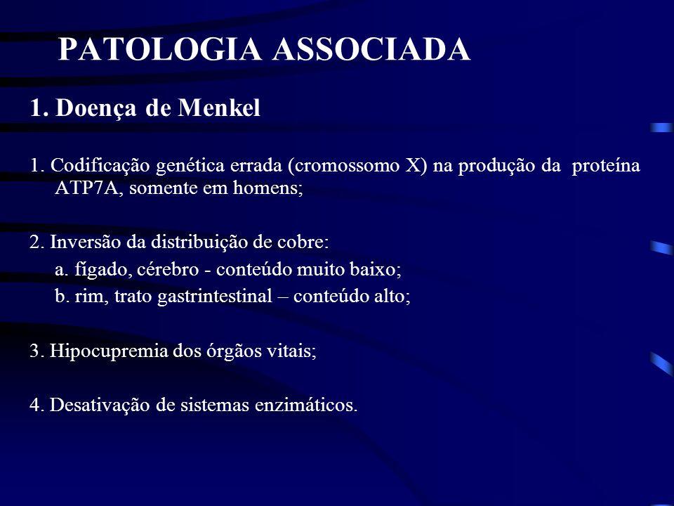 PATOLOGIA ASSOCIADA 1. Doença de Menkel 1. Codificação genética errada (cromossomo X) na produção da proteína ATP7A, somente em homens; 2. Inversão da