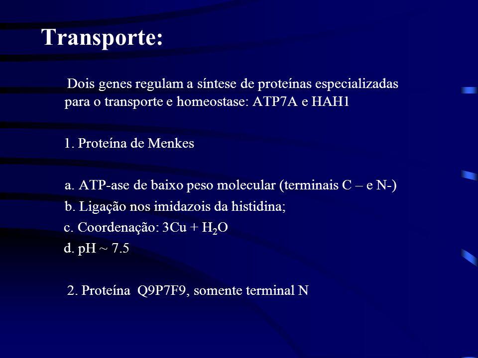 Transporte: Dois genes regulam a síntese de proteínas especializadas para o transporte e homeostase: ATP7A e HAH1 1. Proteína de Menkes a. ATP-ase de