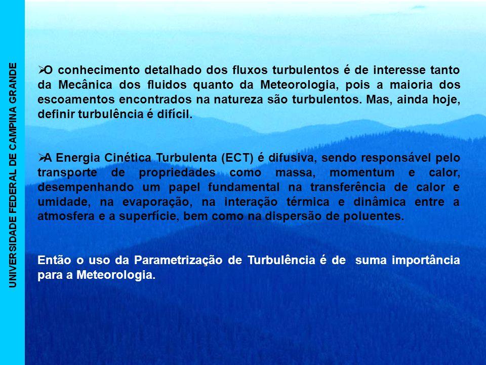 O conhecimento detalhado dos fluxos turbulentos é de interesse tanto da Mecânica dos fluidos quanto da Meteorologia, pois a maioria dos escoamentos encontrados na natureza são turbulentos.