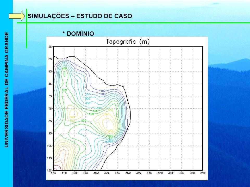SIMULAÇÕES – ESTUDO DE CASO * DOMÍNIO