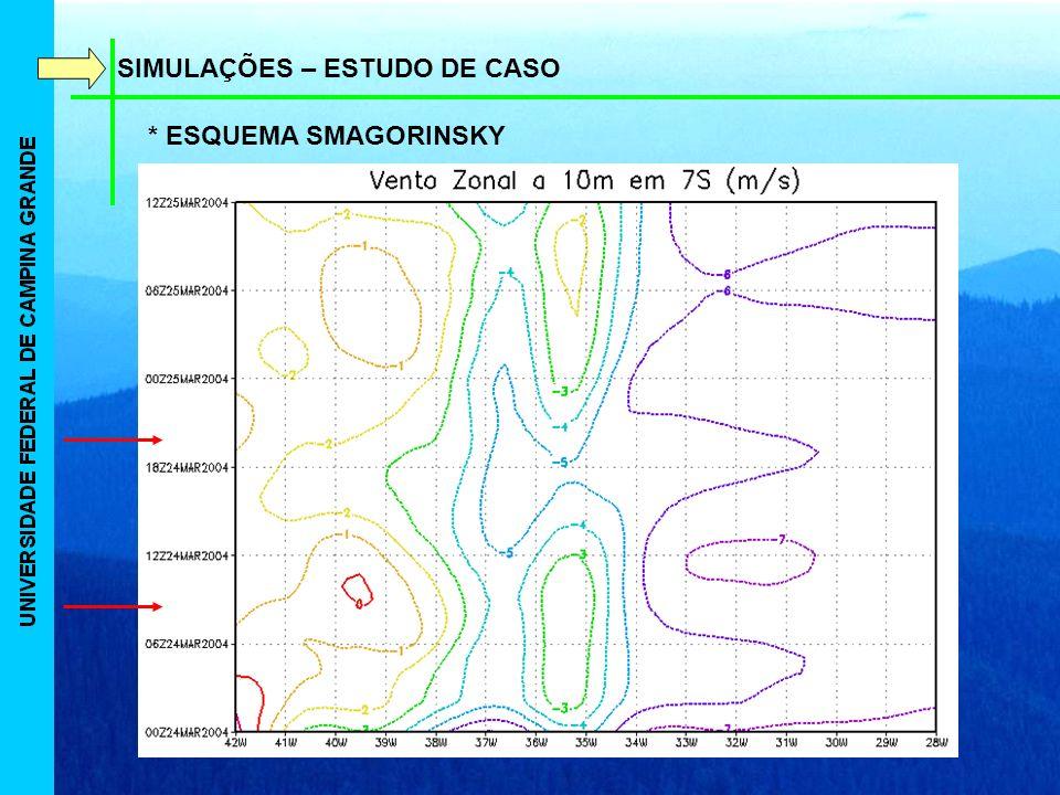 SIMULAÇÕES – ESTUDO DE CASO * ESQUEMA SMAGORINSKY