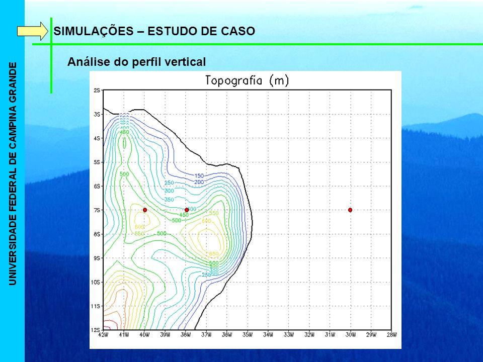 SIMULAÇÕES – ESTUDO DE CASO Análise do perfil vertical
