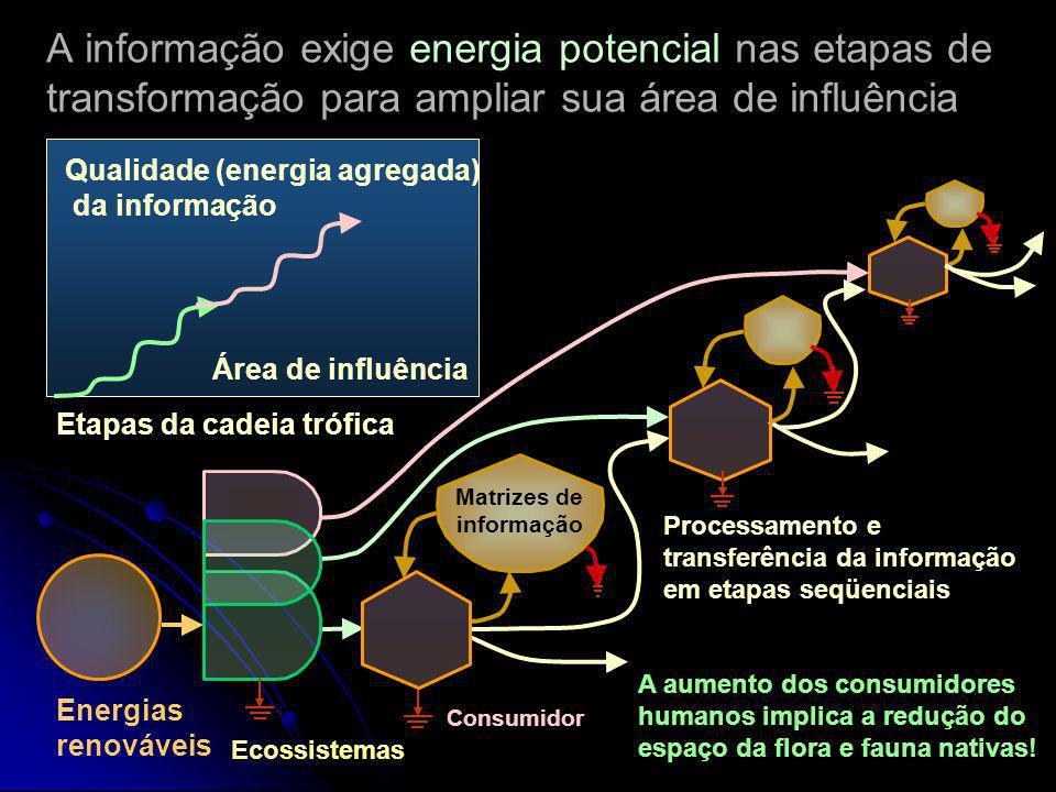 Ciclo que garante a qualidade da informação (H.T. Odum, 2001) Copias Matrizes de informação Depreciação Energia Controle Informação em operação Reprod