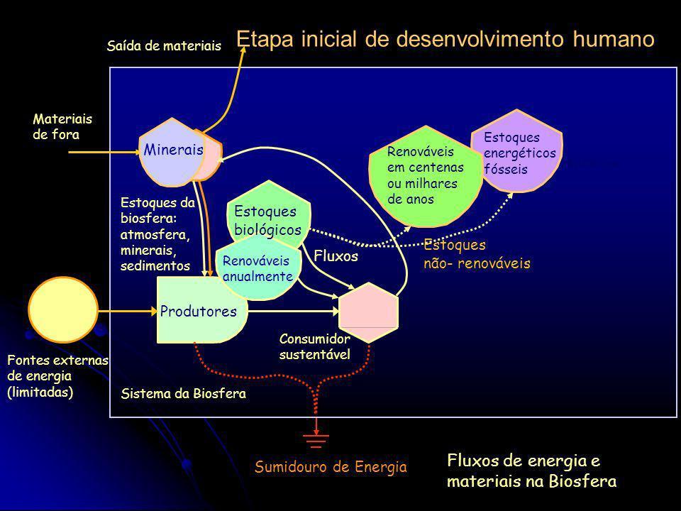 Produção lenta de recursos e pulso de consumo EtapaProdutoresConsumidores autocatalíticos A Acumulação lentaEspera B Clímax e maturaçãoRetorno C Utili