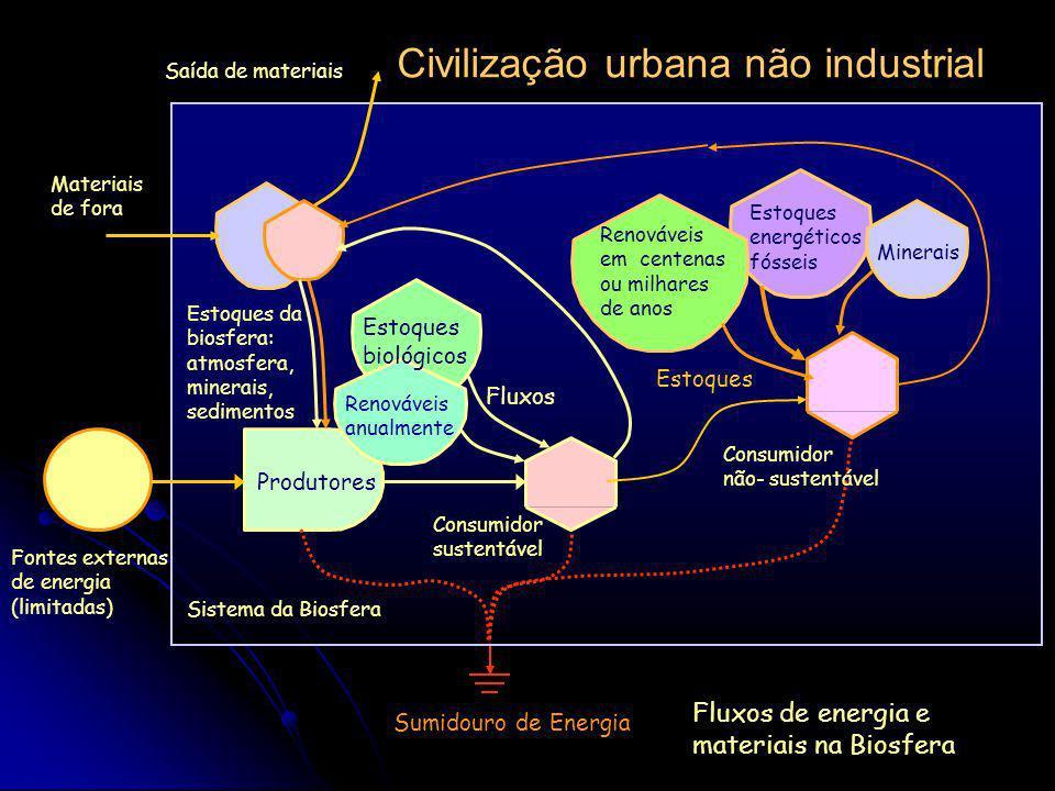 Sumidouro de Energia Sistema da Biosfera Fontes externas de energia (limitadas) Etapa inicial de desenvolvimento humano Produtores Estoques da biosfer