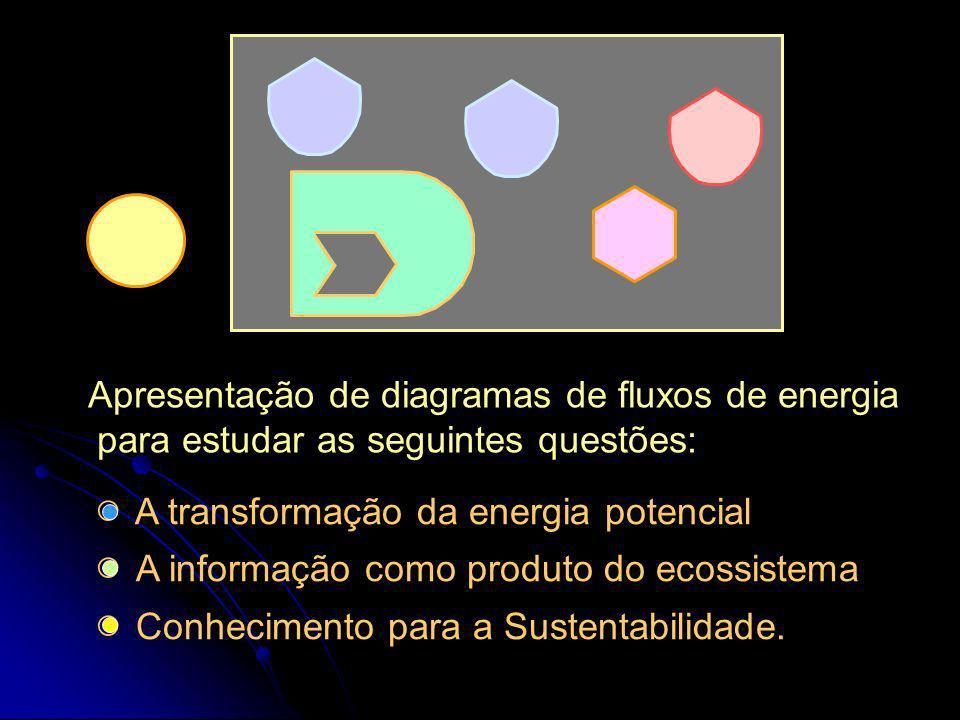 Os fluxos energéticos da Biosfera e a evolução da cultura humana. UNESP - Rio Claro FEA, Unicamp Enrique Ortega Setembro 28, 2005 Laboratório de Engen