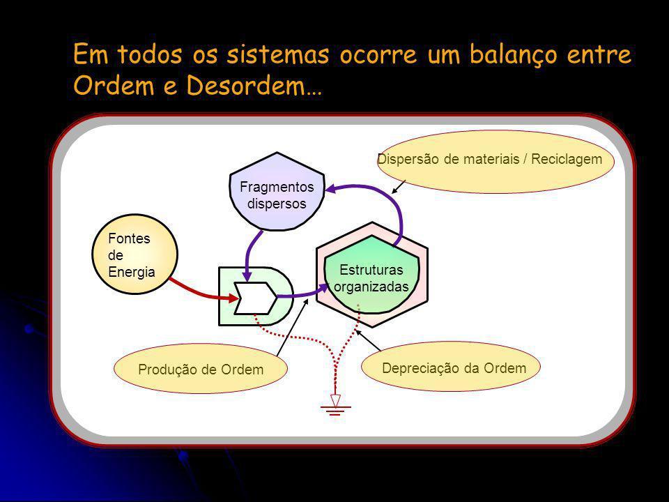 Onde se encaixa a desordem dentro de um Universo supostamente ordenado? Empréstimo de 6 slides da apresentação: Pesquisas sobre a natureza dos sistema