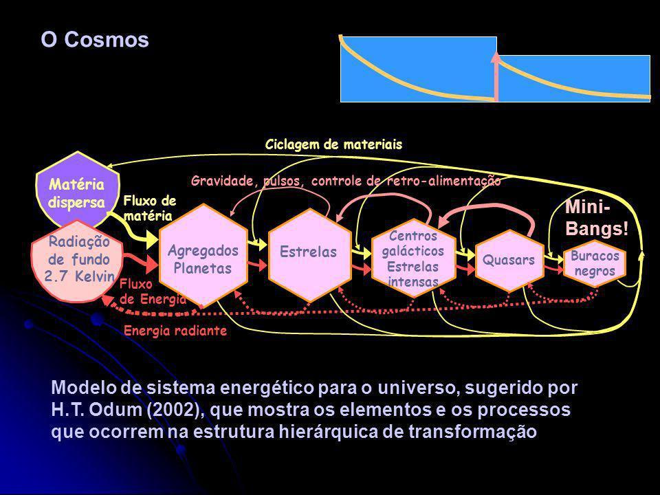 Adaptação à Desordem … Após o pulso catastrófico a situação atrai forças externas que reparam e reorganizam a vida. Em realidade …um pulso de desordem