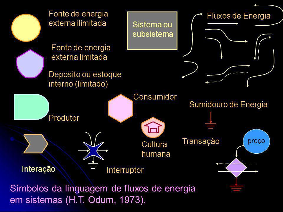 A transformação da energia potencial A informação como produto do ecossistema Conhecimento para a Sustentabilidade. Apresentação de diagramas de fluxo