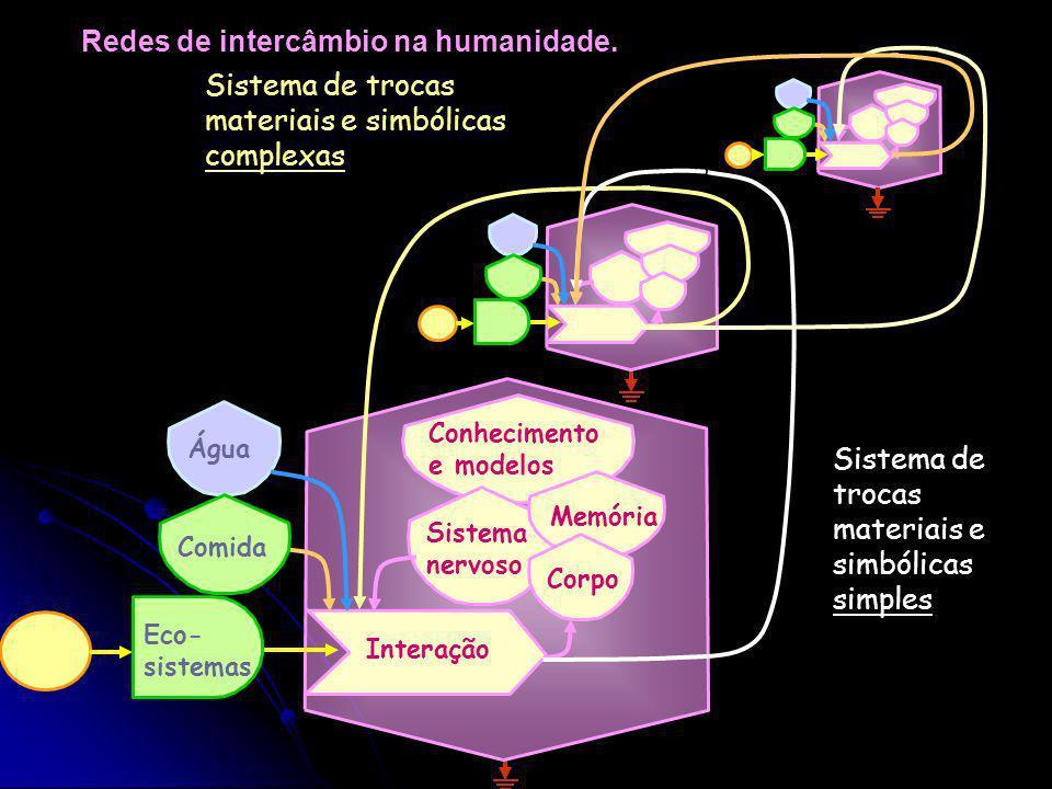 Subsistemas que podem interagir O homem como unidade aberta. Água Eco- sistemas Comida Interação Sistema nervoso MemóriaCorpo Interação com a natureza