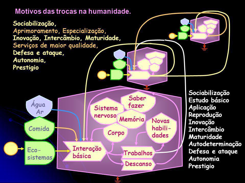 Redes de intercâmbio na humanidade. Água Eco- sistemas Comida Interação Conhecimento e modelos Sistema nervoso Memória Corpo Sistema de trocas materia