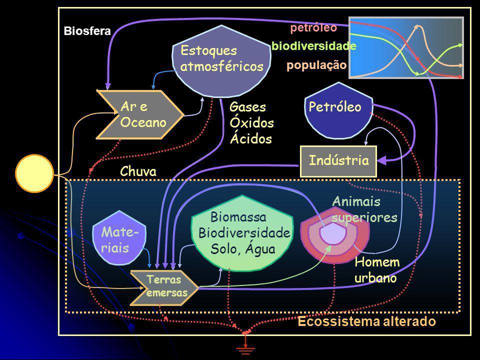 Áreas de suporte Produtores Resíduos Reciclagem Nutrientes Retro-alimentação Consumidores -> Hierarquia espacial Decom- positores Fluxos de energia, m
