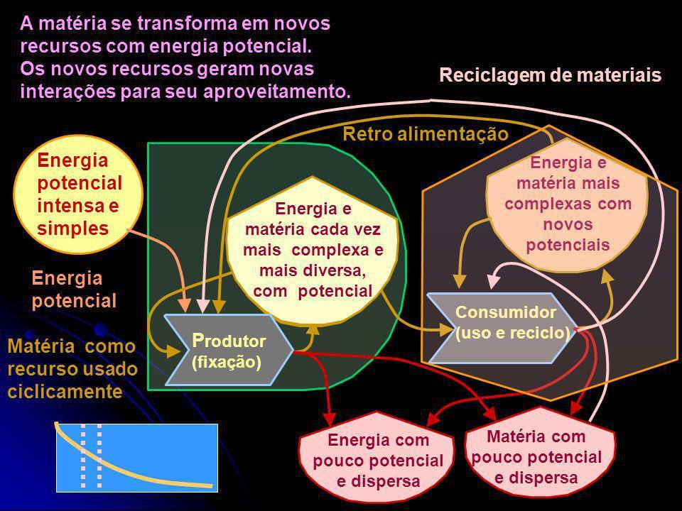 A Energia gera Matéria. A Matéria se transforma e se dispersa. Interação Energia potencial intensa e simples Energia com pouco potencial, desorganizad