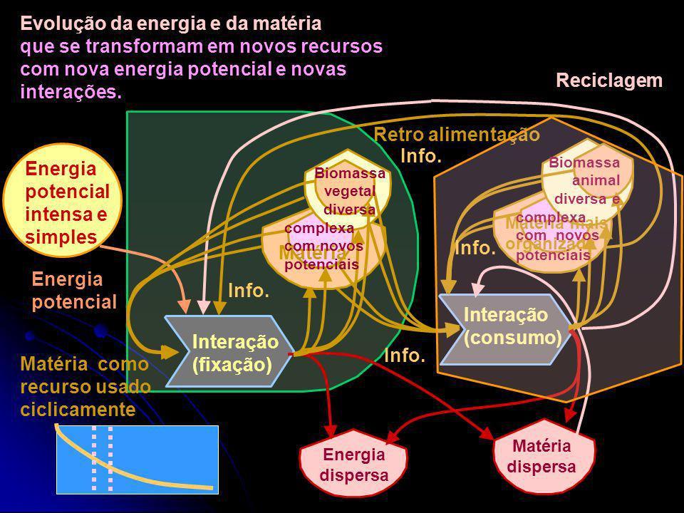 A matéria se transforma em novos recursos com energia potencial. Os novos recursos geram novas interações para seu aproveitamento. Energia potencial i