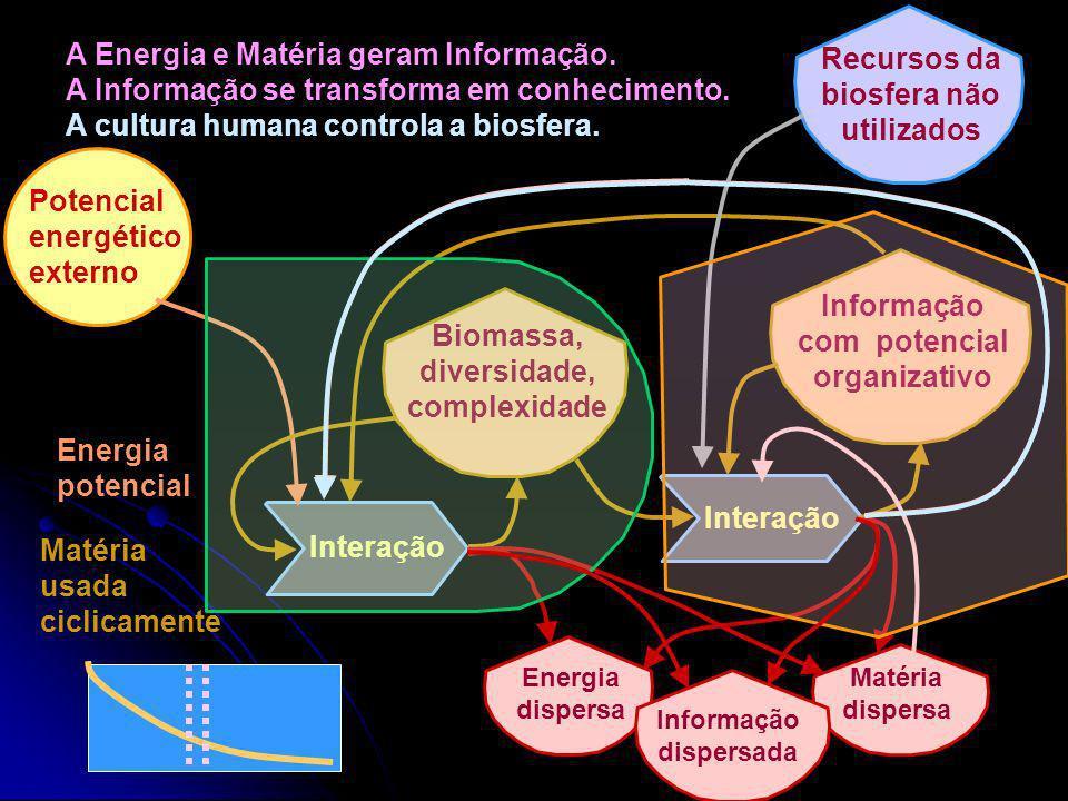 Evolução da energia e da matéria que se transformam em novos recursos com nova energia potencial e novas interações. Interação (fixação) Energia poten